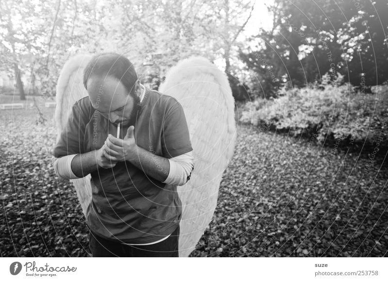 Bengel Rauchen Mensch maskulin Mann Erwachsene 1 30-45 Jahre Umwelt Natur Pflanze Herbst Park Flügel Engel außergewöhnlich fantastisch einzigartig Hoffnung