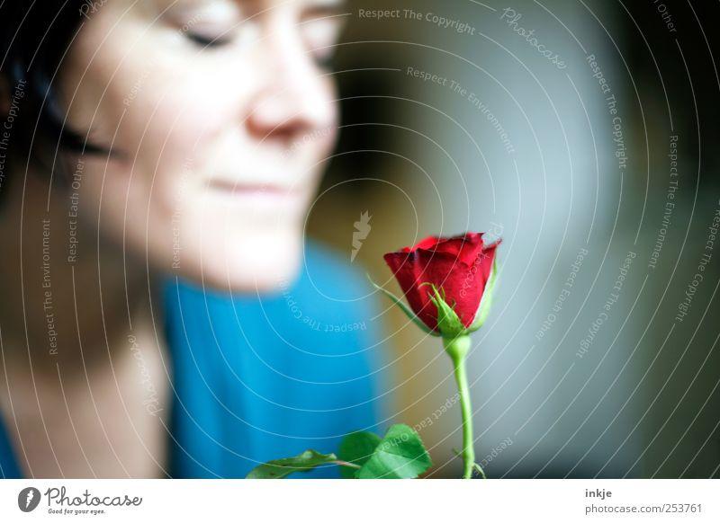 Manchmal können Menschen auch Engel sein ... blau schön rot Gesicht Liebe feminin Leben Gefühle Erwachsene Glück Stimmung Rose Romantik weich rein