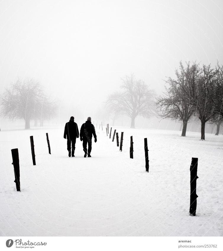 Zwiegespräch Mensch Mann Natur Baum Pflanze Winter ruhig Erwachsene Erholung kalt Schnee Landschaft sprechen grau Park Paar
