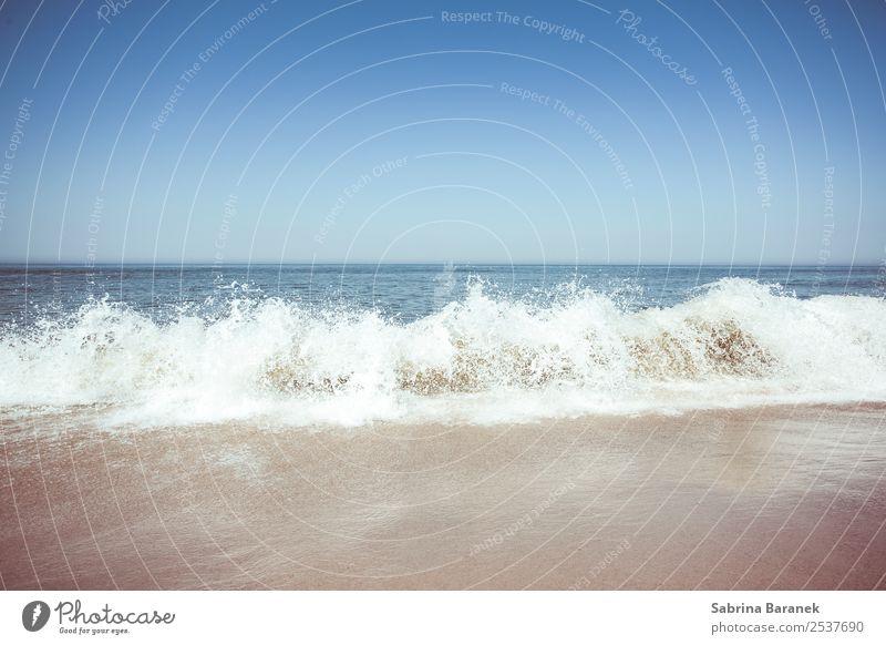 Nordsee II Wellness Erholung ruhig Ferien & Urlaub & Reisen Sommer Sommerurlaub Sonnenbad Strand Meer Natur Sand Wasser Himmel Wolkenloser Himmel Schönes Wetter