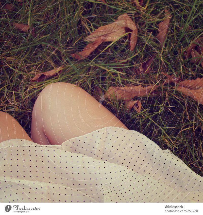 lay down, cause you know it will last.. Mensch Natur schön Herbst feminin Gras Garten Beine Park Erde sitzen natürlich Kleid Warmherzigkeit Idylle dünn
