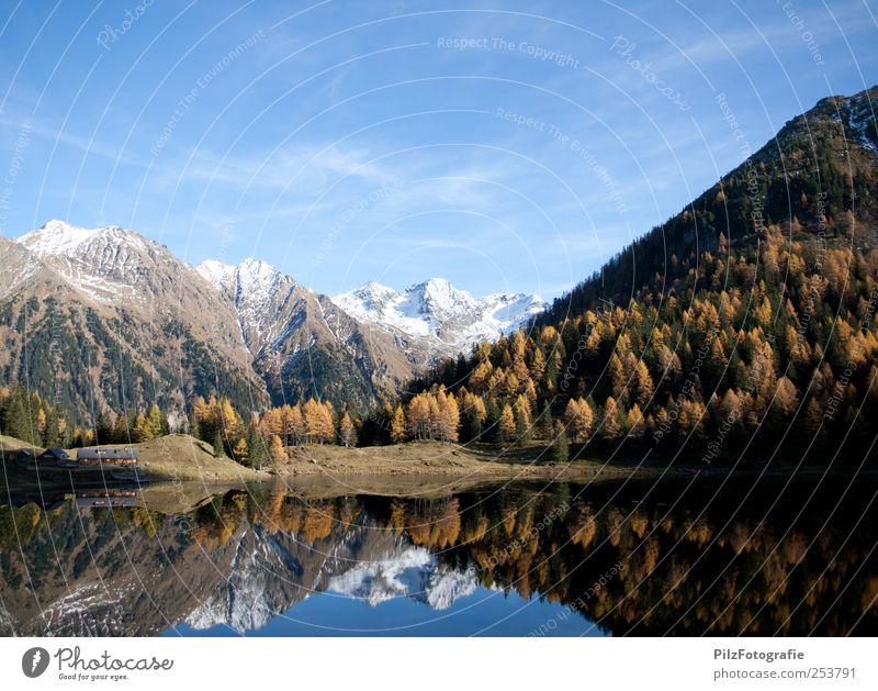 + Umwelt Natur Landschaft Wasser Himmel Herbst Schönes Wetter Baum Wald Gipfel Schneebedeckte Gipfel See Duisitzkarsee Hütte außergewöhnlich Glück blau