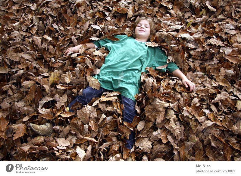 perfect day grün Mädchen Freude Blatt ruhig Umwelt Herbst Glück Garten träumen Park braun Zufriedenheit blond liegen T-Shirt