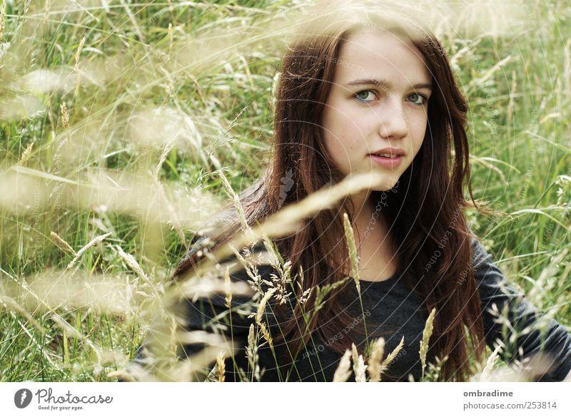 natürlich schön Mensch Frau Natur Jugendliche Sommer ruhig Erwachsene Gesicht Umwelt feminin Leben Junge Frau Zufriedenheit einzeln brünett