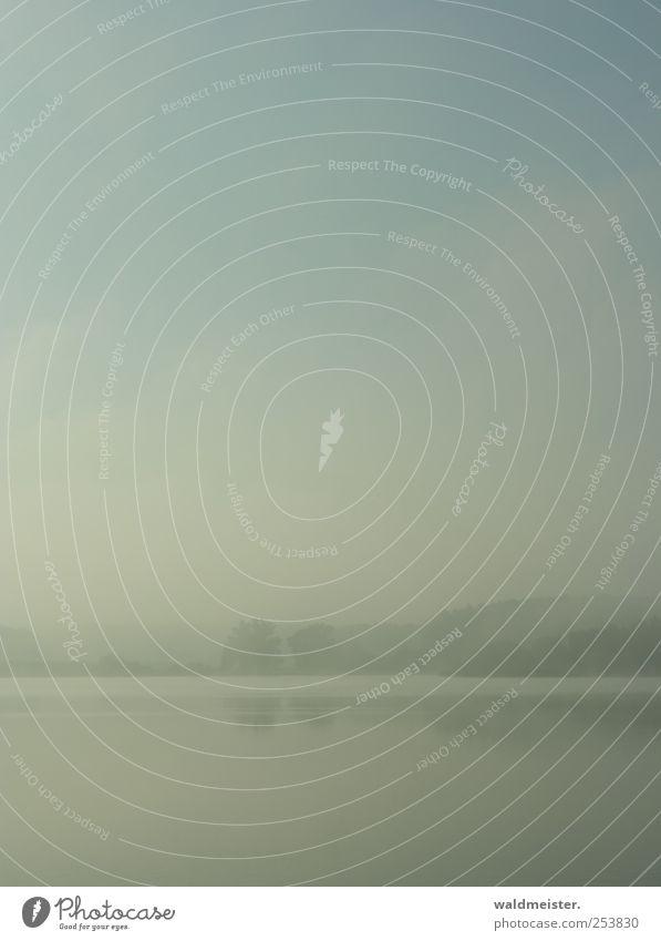 Nebelbild Natur Erholung Landschaft Wetter Nebel ästhetisch weich Seeufer