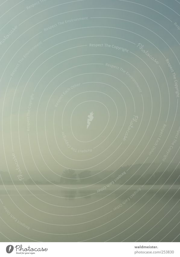 Nebelbild Natur Landschaft Wetter Seeufer Erholung weich ästhetisch Außenaufnahme abstrakt Morgendämmerung
