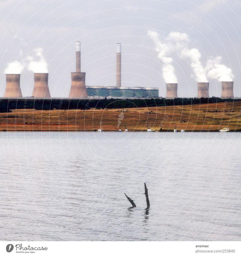 Waldsterben Energiewirtschaft Kohlekraftwerk Energiekrise Natur Wasser Herbst Klimawandel Seeufer Südafrika Menschenleer Stromkraftwerke Kühlturm Umwelt