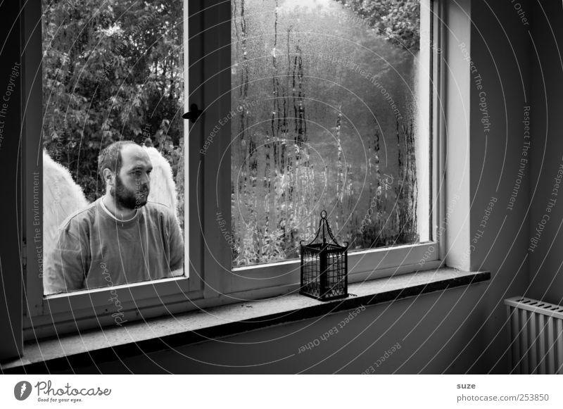 Engel Raum Mensch maskulin Mann Erwachsene 1 30-45 Jahre Fenster Flügel Glas Traurigkeit außergewöhnlich Hoffnung Trauer Glaube Religion & Glaube Schutzengel
