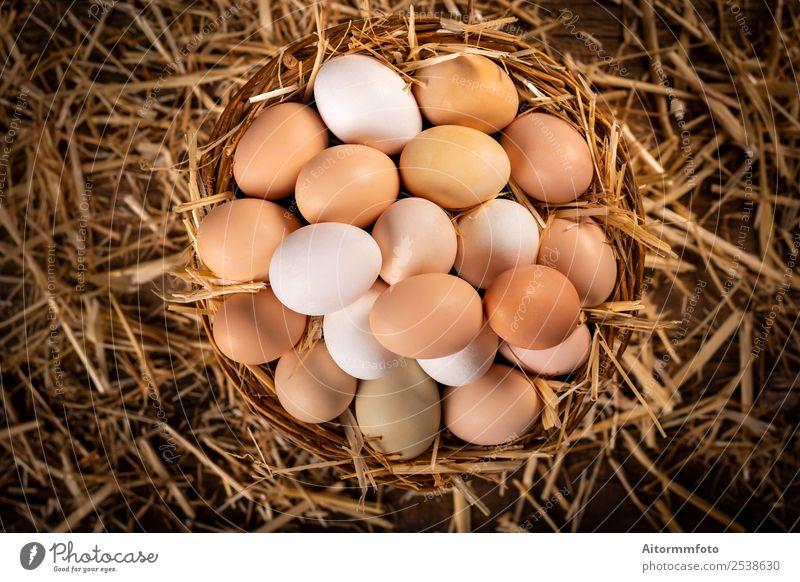 Von oben Korb mit frischen Eiern vom Bauernhof Lebensmittel Ernährung Dekoration & Verzierung Tisch Ostern Natur Landschaft Holz natürlich braun weiß