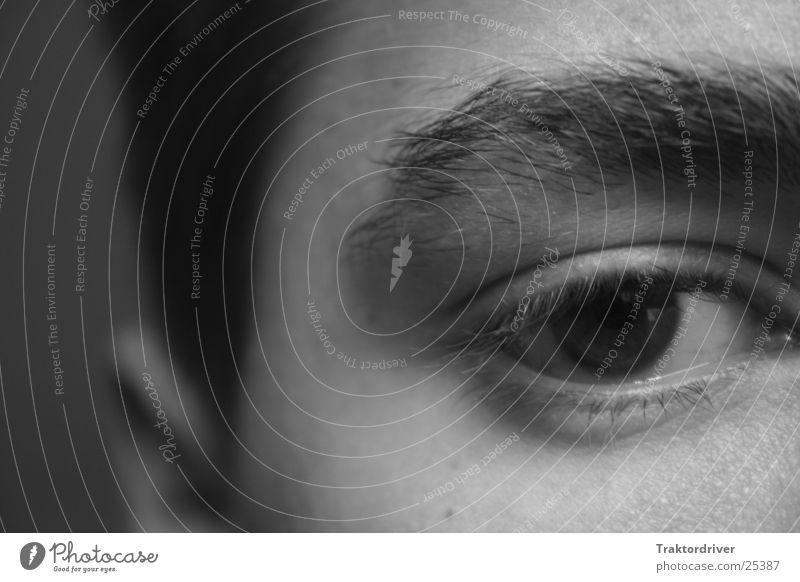 Gelangweilter Blick Mann Auge Haare & Frisuren trist Ohr Müdigkeit Langeweile Augenbraue skeptisch Kritik