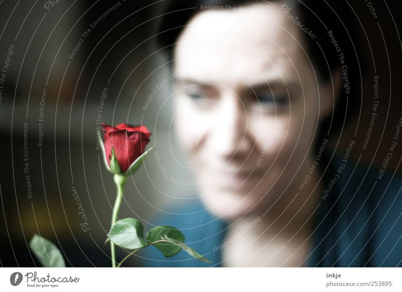 eine Rose ist eine Rose ist eine Rose... Frau Mensch schön rot Freude Gesicht Liebe Leben Gefühle Erwachsene Stil träumen Stimmung Freundschaft Lifestyle