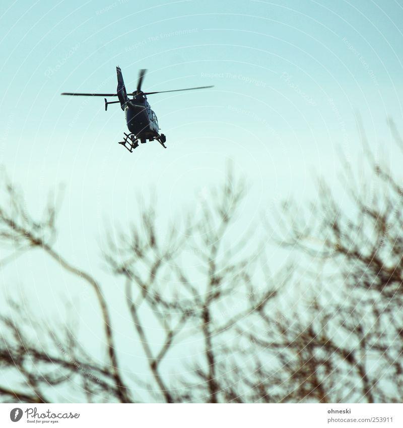 Hubschraubär Himmel Baum fliegen Verkehr Luftverkehr Ast Flugangst Hubschrauber
