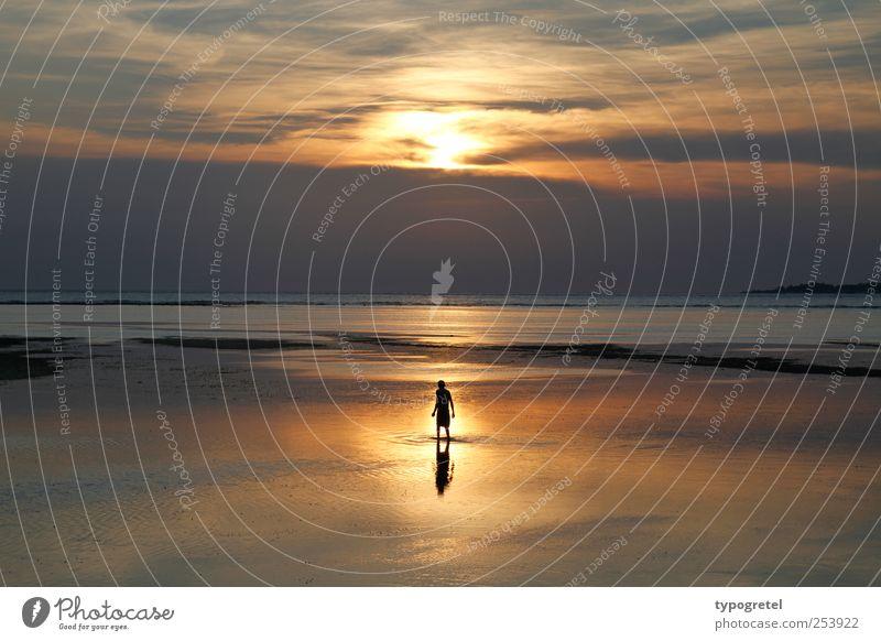 Spiegelmeer Ferien & Urlaub & Reisen Ferne Strand Meer Mann Erwachsene 1 Mensch stehen glänzend gold ruhig Natur Sonnenuntergang Wolken Horizont Meeresspiegel