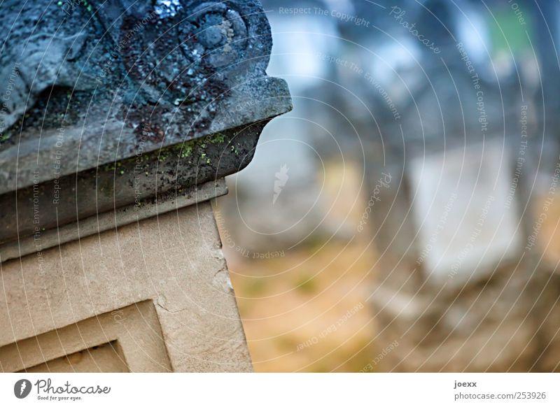 Erinnerungen Menschenleer Stein Ornament alt blau braun Akzeptanz Vorsicht ruhig Hoffnung Trauer Tod Vergänglichkeit Grabstein Friedhof Schnörkel Farbfoto