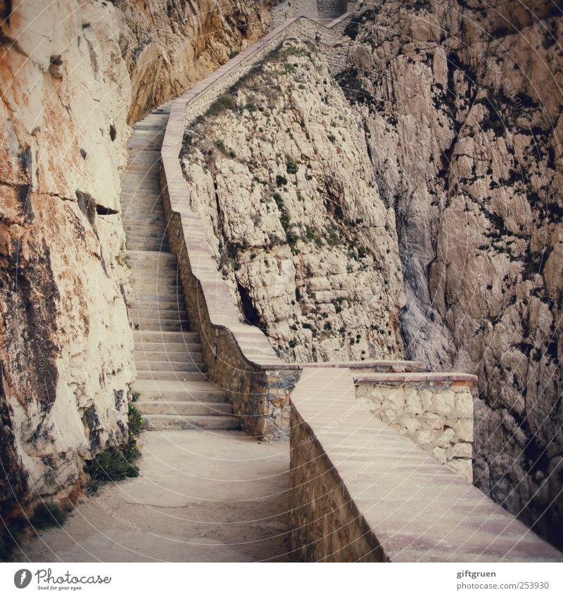 654 steps Umwelt Berge u. Gebirge Felsen Treppe gefährlich Urelemente Richtung aufwärts anstrengen aufsteigen steil karg steinig Landschaftsformen Felswand Steilwand