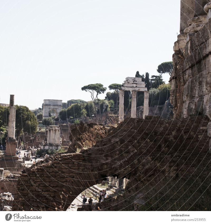 ROM 11-11-11 Kunst Kultur Rom Italien Europa Stadt Hauptstadt Stadtzentrum Altstadt Ruine Bauwerk Gebäude Säule Sehenswürdigkeit Wahrzeichen Forum Romanum alt