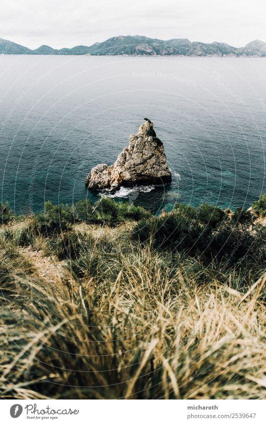 Insel vor Küste Ferien & Urlaub & Reisen Ferne Wellen Umwelt Natur Landschaft Tier Wasser Herbst Klimawandel Wetter Regen Pflanze Gras Sträucher Felsen Meer