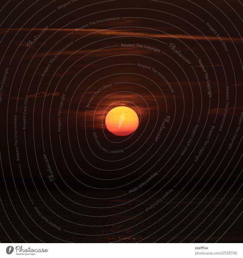 glut Umwelt Natur Sonne Sonnenaufgang Sonnenuntergang Sonnenlicht Sommer Klimawandel heiß Wärme Wetterschutz Farbfoto Menschenleer Textfreiraum links