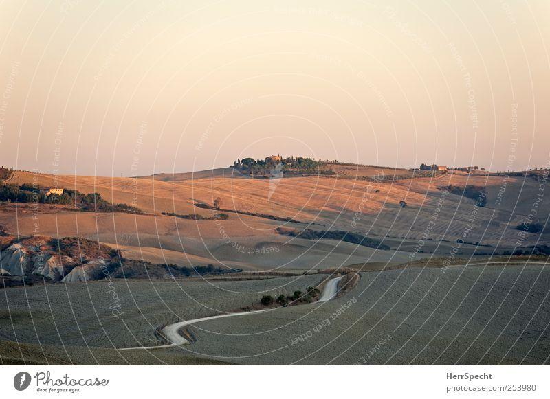 Toskanamorgen Natur Landschaft Wolkenloser Himmel Herbst Schönes Wetter Feld Hügel Straße Wege & Pfade ästhetisch schön braun Crete Morgendämmerung Wellenlinie