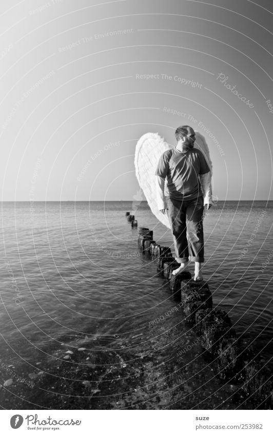 Engel Mensch Mann Wasser Meer Erwachsene Freiheit Küste Religion & Glaube Horizont maskulin außergewöhnlich stehen Flügel Hoffnung Engel 18-30 Jahre