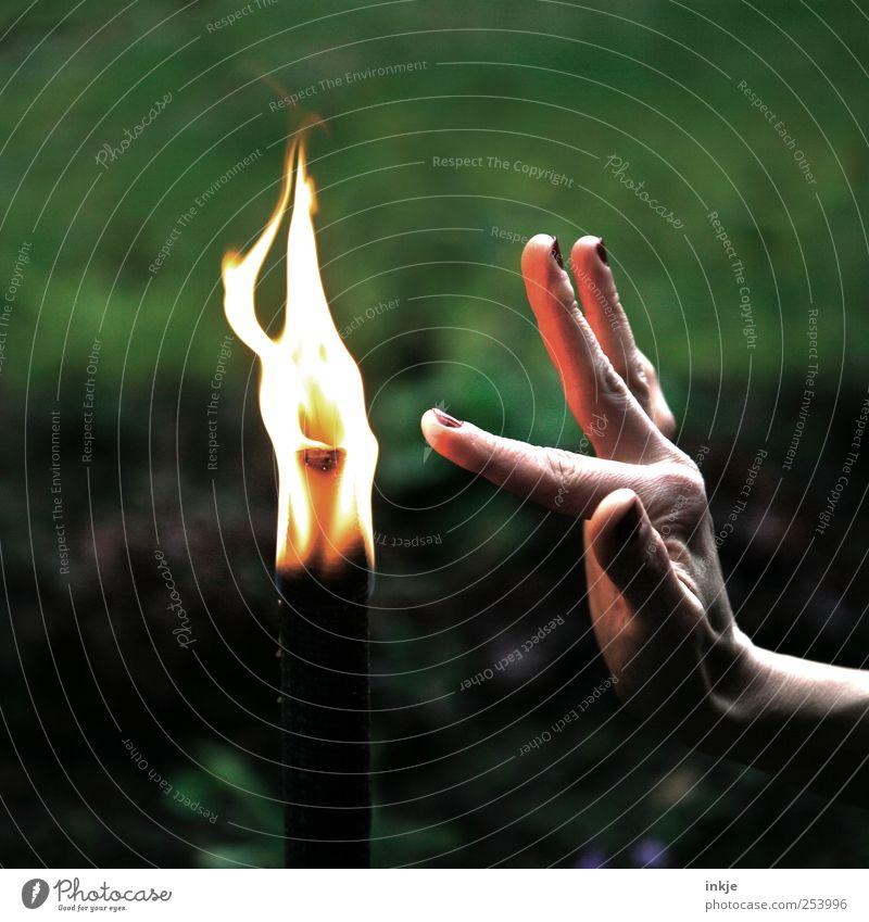touch the flame... Feuer Fackel Flamme berühren Spielen leuchten Tanzen heiß lang nah Spitze Gefühle Stimmung achtsam Vorsicht Selbstbeherrschung vernünftig