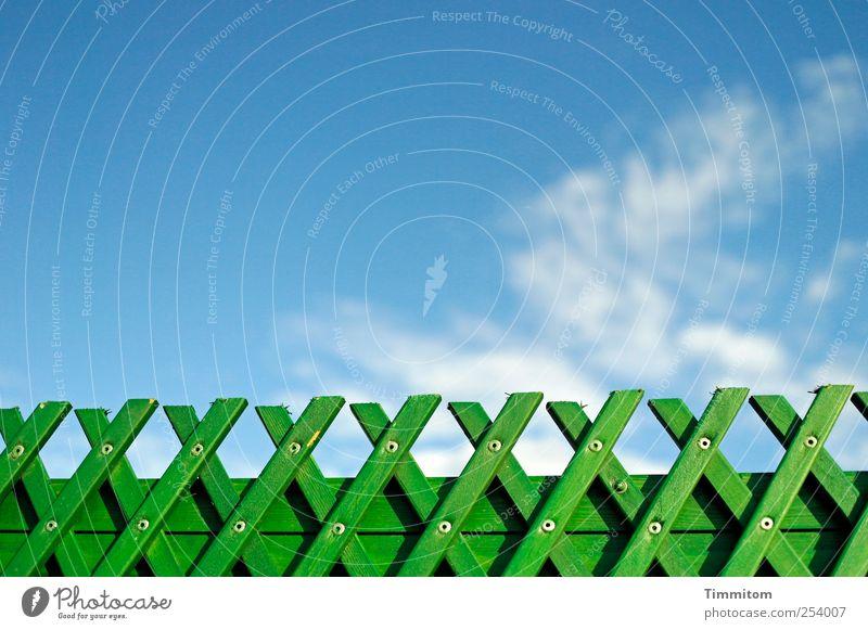 Grüner wird`s nicht! Herbst Himmel Wolken Schönes Wetter Heidelberg Menschenleer Brücke Geländer Holz ästhetisch frisch blau grün Gefühle Freude Schutz Wind