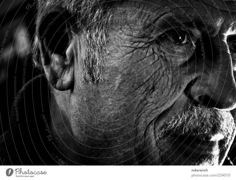 Mann weiß schwarz Erwachsene Gefühle Stimmung Fröhlichkeit Fotografie Geldinstitut Vertrauen Westen Ferien & Urlaub & Reisen Flüchtlinge Abteilung Porträt
