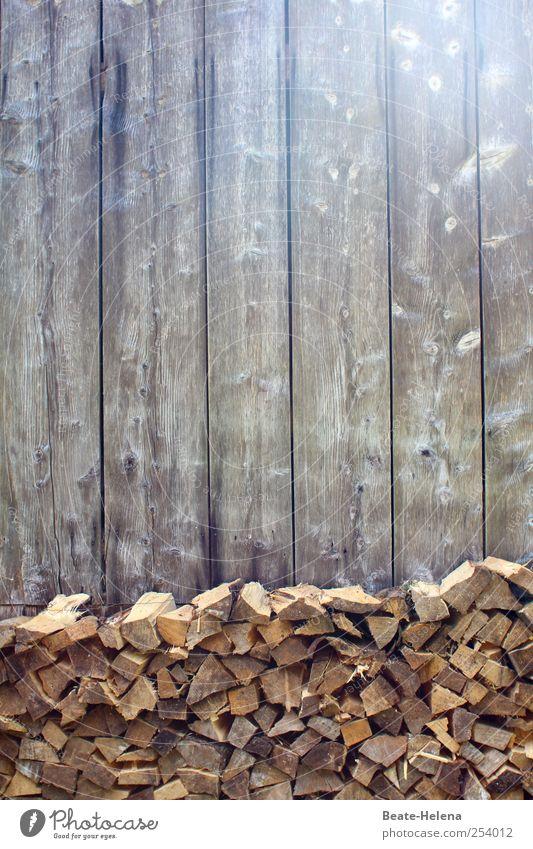 Gleich und gleich gesellt sich gern Wohnung Natur Haus Gebäude Mauer Wand Holz Arbeit & Erwerbstätigkeit warten kalt grau sparsam Beginn Bewegung planen