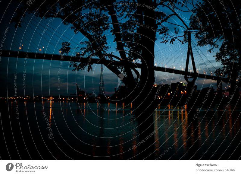 Köhlbrandbrücke III Himmel Natur Wasser blau Baum Stadt Landschaft Hamburg Brücke Bauwerk Hafen Verkehrswege Schifffahrt Flussufer Nachthimmel Hafenstadt