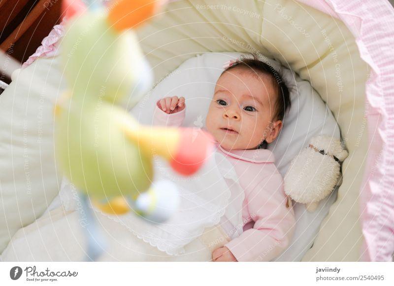 Babymädchen zwei Monate alt, schaut auf eine Puppe. Freude Glück schön Gesicht Leben Kind Fotokamera Mensch Mädchen Kindheit 1 0-12 Monate Lächeln lachen
