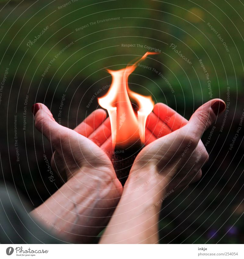 schön ist eigentlich alles, was man mit Liebe betrachtet Mensch Hand Leben Gefühle Stimmung Freizeit & Hobby Abenteuer außergewöhnlich Feuer Coolness Spitze beobachten Neugier festhalten Schutz heiß