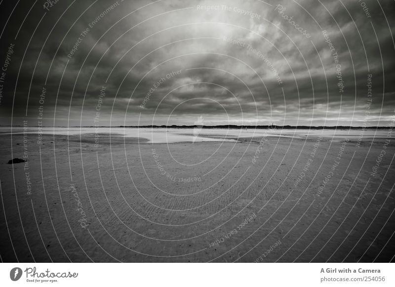 Spiekeroog l hell from above Umwelt Natur Landschaft Urelemente Sand Wasser Himmel Wolken Gewitterwolken schlechtes Wetter Unwetter Wind Sturm Küste Strand