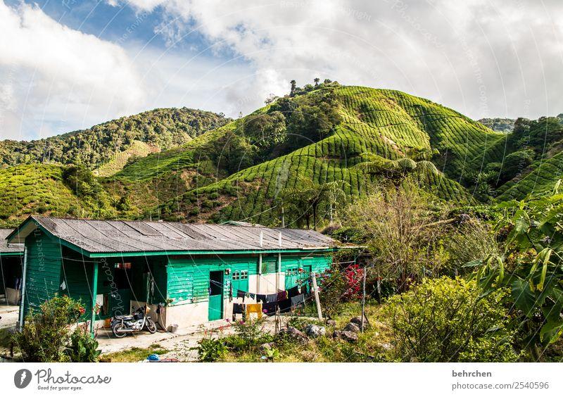 zuhause Ferien & Urlaub & Reisen Natur schön grün Landschaft Baum Haus Ferne Berge u. Gebirge Tourismus Freiheit außergewöhnlich Ausflug Feld Abenteuer