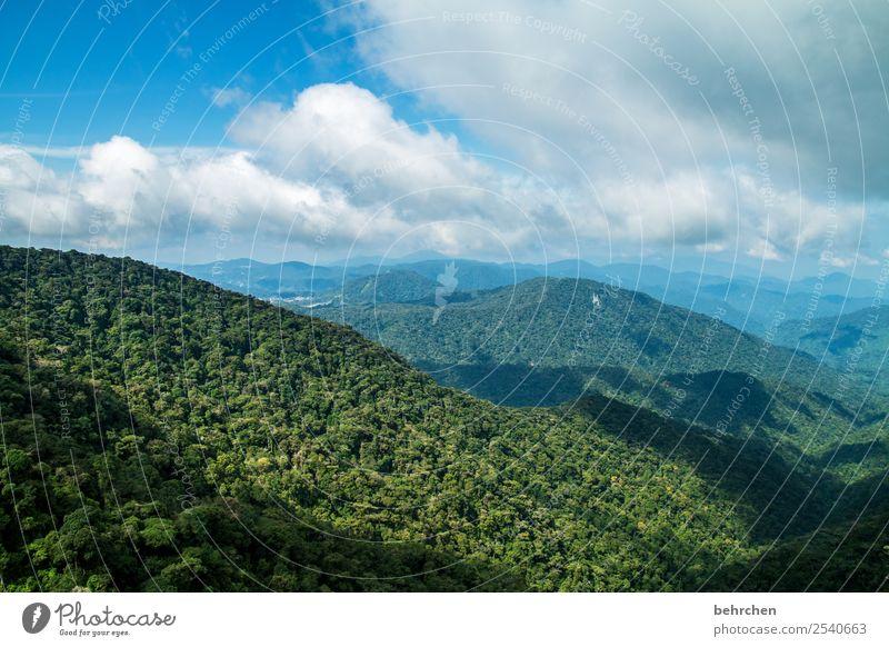 weitsicht Himmel Ferien & Urlaub & Reisen Natur grün Landschaft Baum Wolken Blatt Ferne Berge u. Gebirge Tourismus Freiheit Ausflug Abenteuer Hügel Asien