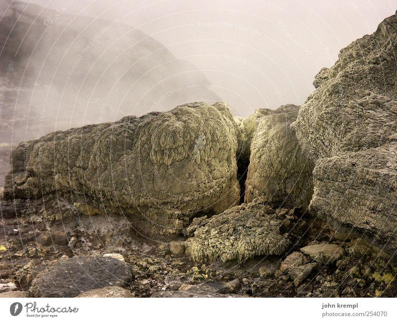Der Nagel I dunkel grau braun Felsen Wandel & Veränderung Vergänglichkeit heiß Wut bizarr Zerstörung Schlucht Krise Vulkan Neuseeland Endzeitstimmung Natur