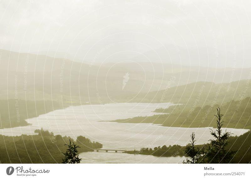 Weit Umwelt Natur Landschaft schlechtes Wetter Nebel Teich See Brücke frei grau grün Freiheit Horizont ruhig Ferne Schottland Binnensee Aussicht Baumkrone
