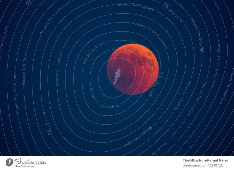 Blutmond Natur blau rot Mond blutmond verwaschen Himmel Weltall Nacht Detailaufnahme Ferne Farbfoto Außenaufnahme Menschenleer Textfreiraum unten