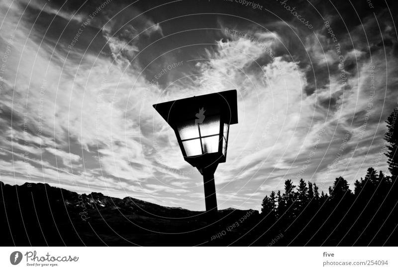 richtung wien Natur Landschaft Himmel Wolken Sonne Sonnenlicht Herbst Wetter Schönes Wetter Pflanze Baum Sträucher Wiese Wald Hügel Felsen Alpen