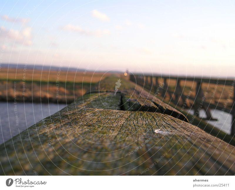 geländer Holz Rost Makroaufnahme Nahaufnahme Brücke Geländer Landschaft Natur