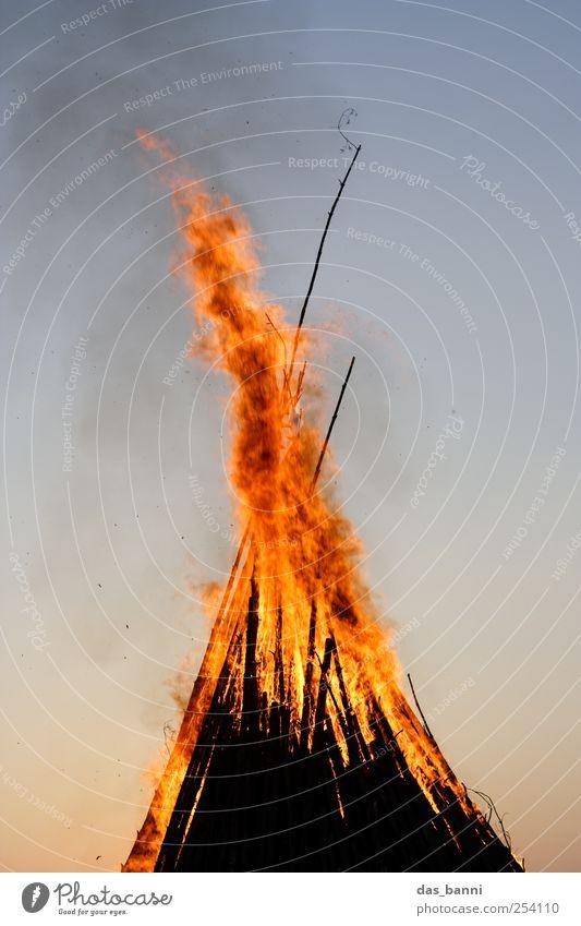 burn Umwelt Natur Urelemente Feuer Himmel Baum Wald Aggression ästhetisch bedrohlich groß gruselig schön blau braun gelb rot schwarz Abenteuer chaotisch