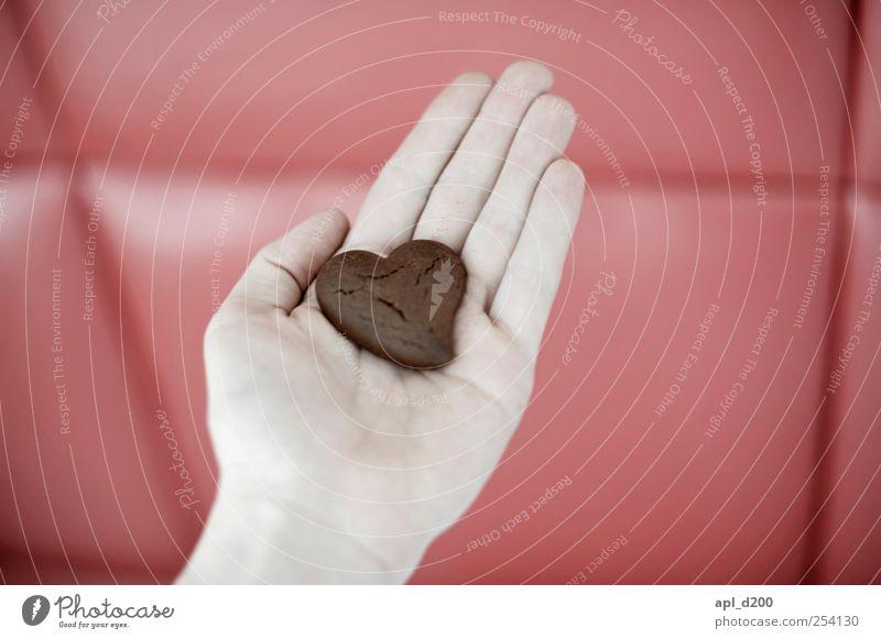 Herz auf Hand Lebensmittel Teigwaren Backwaren Schokolade Ernährung Mensch maskulin 1 festhalten süß braun rot Glück Lebensfreude Liebe reich schokoherz