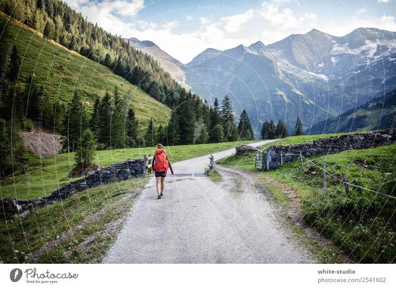 Wanderlust Frau Natur Ferien & Urlaub & Reisen Ferne Berge u. Gebirge Erwachsene Sport Tourismus Freiheit Ausflug wandern Aktion Abenteuer Fitness Alpen