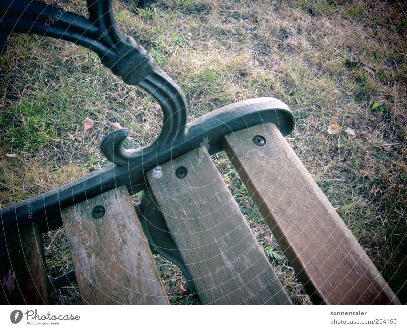 private banking Erholung ruhig Möbel Bank Herbst Gras Wiese Denken trist Traurigkeit Trauer Tod Einsamkeit Sitzgelegenheit sitzen Holz Metall Rasen ruhen Pause