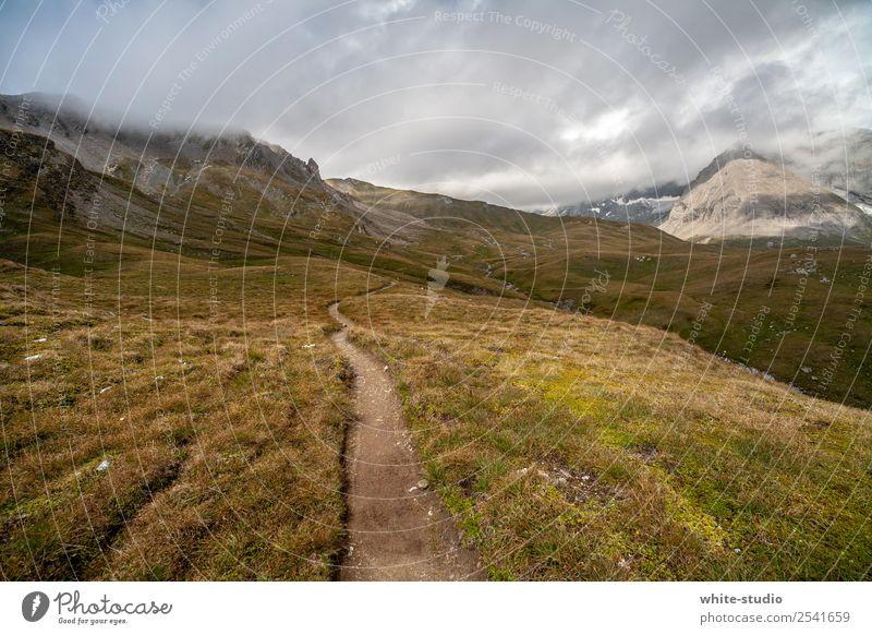 Wanderpfad Natur Landschaft Erholung ruhig Berge u. Gebirge Umwelt Wege & Pfade wandern leer Fußweg Alpen Österreich abgelegen Wildnis Naturliebe Wandertag