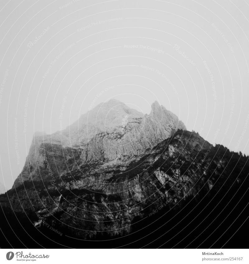 walls. Klima Schönes Wetter Pflanze Baum Sträucher Wald Hügel Felsen Alpen Berge u. Gebirge Gipfel Schlucht Stimmung Sicherheit Geborgenheit authentisch