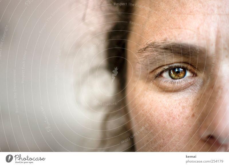 Behind greenbrown eyes Mensch Frau Gesicht Erwachsene Auge Leben Gefühle Kopf Traurigkeit braun glänzend Sorge skeptisch Augenbraue 30-45 Jahre Pupille