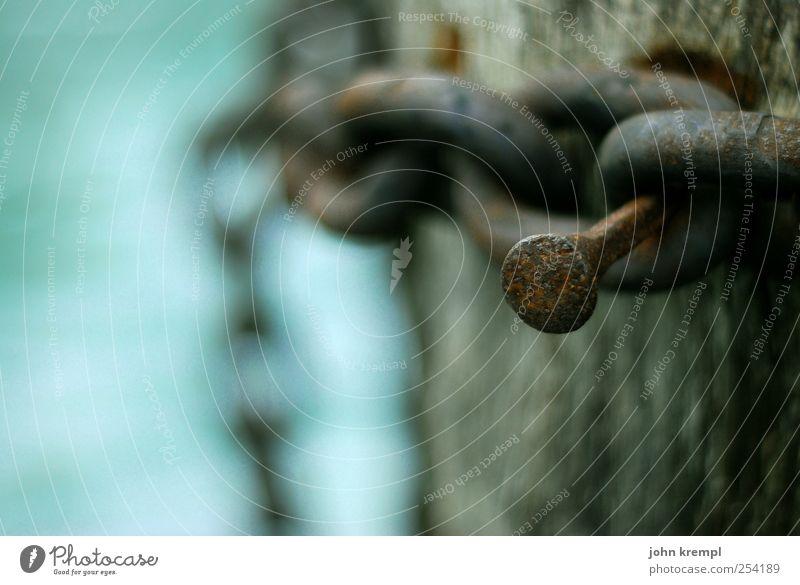 Der Nagel II Kette Kettenglied Holzpfahl Metall Rost alt trist blau braun Vergänglichkeit Wandel & Veränderung Farbfoto Außenaufnahme Menschenleer