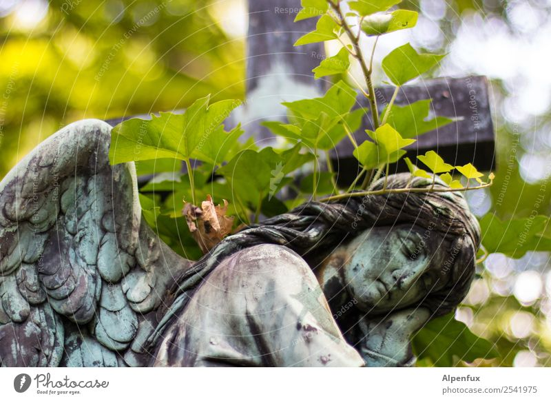 steinig | Engel Einsamkeit Leben Liebe Senior Traurigkeit Tod Stein Zusammensein Freundschaft Angst träumen Kraft Ewigkeit Hoffnung Schutz Todesangst