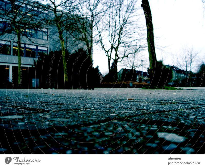 schulhof Baum Architektur Schulgebäude trist Gewalt Langeweile Kopfsteinpflaster grauenvoll Schulhof streng Oldenburg