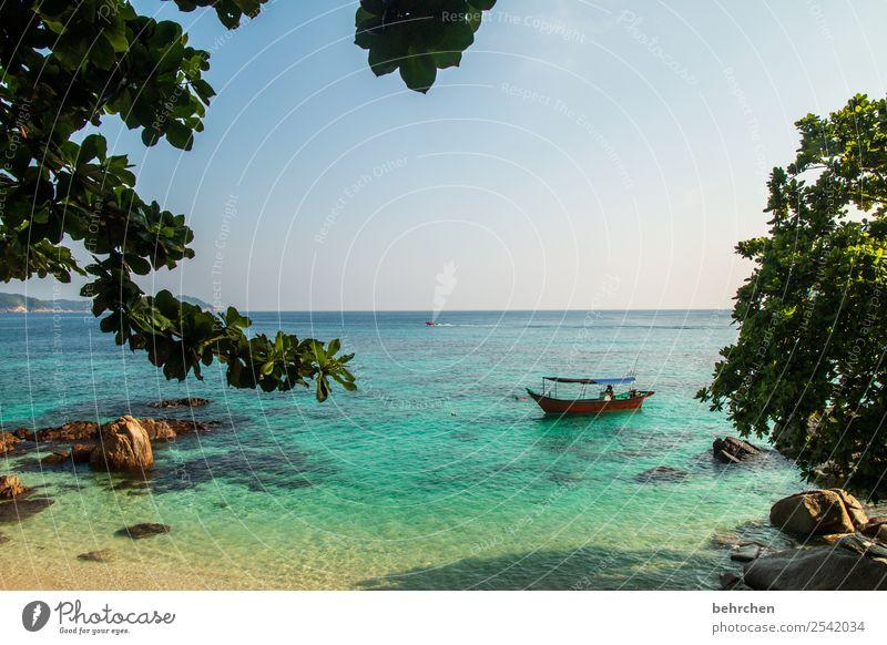 sich treiben lassen | FERNWEH Himmel Ferien & Urlaub & Reisen Natur schön Landschaft Meer Blatt Ferne Strand Küste Tourismus außergewöhnlich Freiheit Felsen